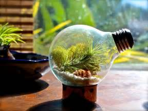 terrarium design creative diy terrarium glass air plant containers with upcycled light bulbs ideas