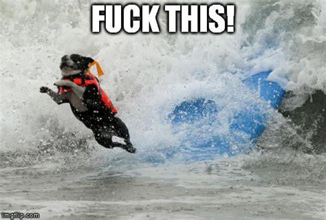 Surf Shirt Meme - funny surfing meme askideas com