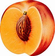 Fruit Peach Transparent