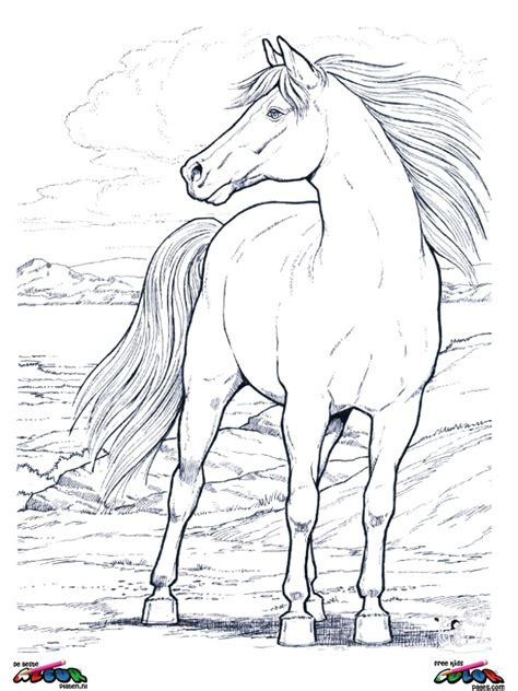 Horses011 - Printable coloring pages