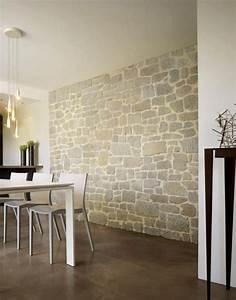 Pierre Pour Mur Intérieur : pierre de parement salon un parement de pierre dans le salon pierre de parement rev tement ~ Melissatoandfro.com Idées de Décoration