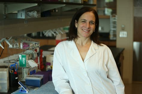 Ucf Study Protein May Trigger Cancer Cell's Metabolism