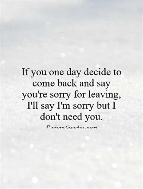 Am Sorry I Want You Back Quotes