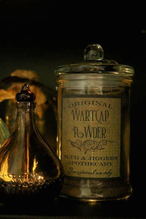 creating  potions setup harry potter hogwarts dinner