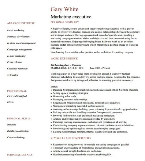 Executive Resumes Templates by 6 Executive Resume Templates Word Website