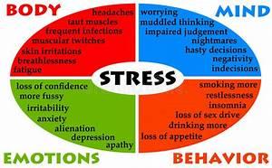 Stress Diagram Stock Illustration  Illustration Of Doubts