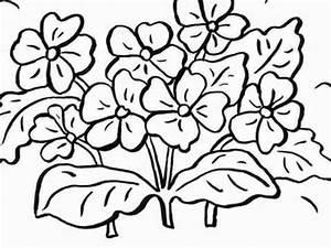 Blumen Zum Ausdrucken : ausmalbilder blumen blumen vorlagen zum ausschneiden youtube ~ Watch28wear.com Haus und Dekorationen