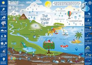 Water Cycle For Kids Poster  Image