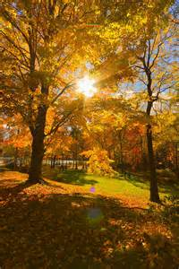 Colorful Fall Scenery