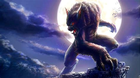 werewolf full moon fantasy wallpaper  desktop