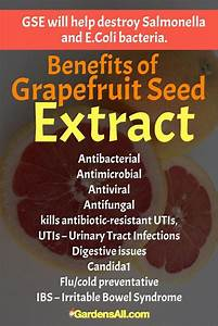 Grapefruit Seed Extract Kills All Kinds Of Infectious Microbes U2014bacterial  Viral  And Fungal  Gse