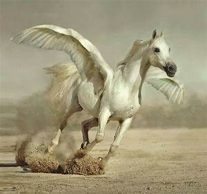 A Real Pegasus | www.pixshark.com - Images Galleries With ...