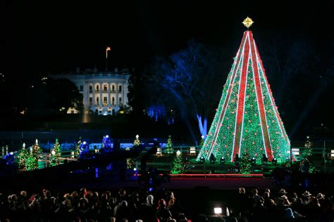 visiting national christmas tree at night climbs national tree near white house lawn