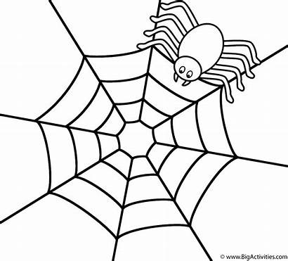 Coloring Spider Web Spiders Insects Crawly Creepy