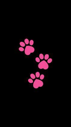 puppy paw print wallpaper bing images paw prints