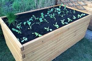 Tomaten Im Hochbeet : ein hochbeet planen aufstellen und bepflanzen ~ Whattoseeinmadrid.com Haus und Dekorationen