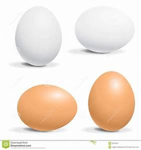 Hen egg stock vector. Image of fresh, food, gift, closeup ...