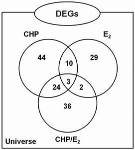 Venn Diagram Representation Of Gene Expression Patterns