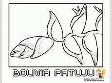Dibujo De Escudo De Bolivia 9
