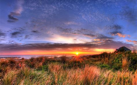 Widescreen Image by Wallpapers Pictures Images