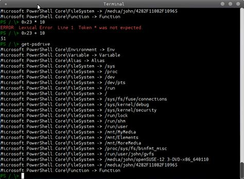 linux console using powershell on linux with the pash console