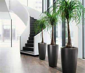 25, Awe, Office, Plants, Interior, Design, Ideas, U2013, 13, Is, Damn, Beautiful