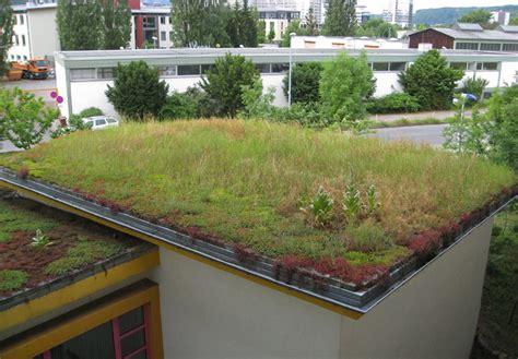 Extensive Dachbegrünung Garage Kosten by M 246 Glichkeiten Der Begr 252 Nung Eines Flachdaches Oder Einer