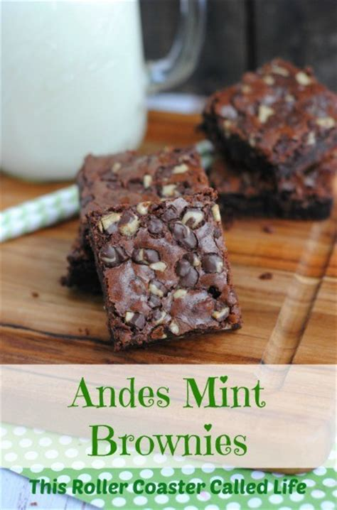 andes mint brownies  roller coaster called life