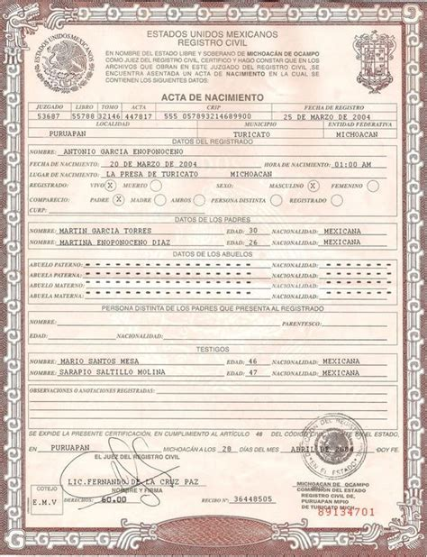 mexican birth certificate psd photoshop template