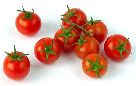 pomodoro ciliegino in vaso pomodoro ciliegino coltivazione in orto e in vaso idee