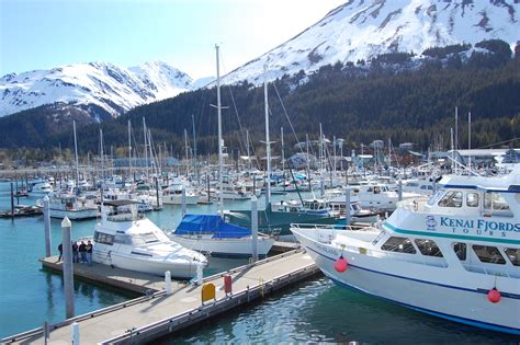 Boat Harbor by Seward Small Boat Harbor Seward City News