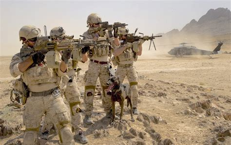 They Can't Be Beaten: How the U.S. Navy SEALs Were Born ...