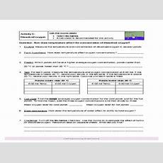 Aquatic Ecosystems Worksheet Answer Key  Free Printables Worksheet