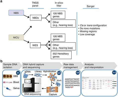 illumina ngs sequencing algorithm and workflow for next generation sequencing ngs