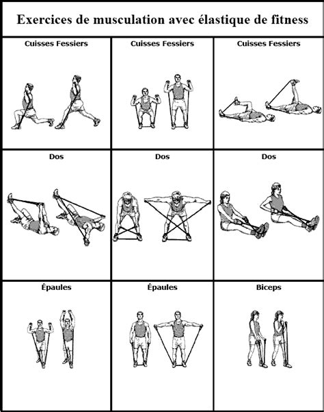 exercices de muscu simple - Ecosia 884988f09a0