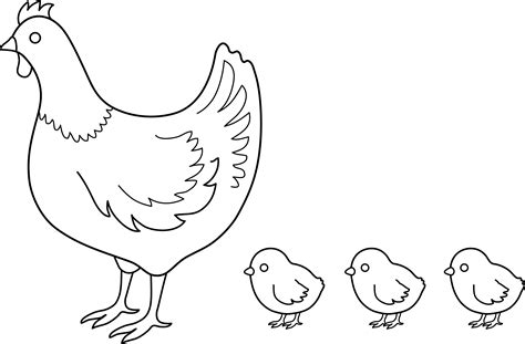 hen  chicks coloring page  clip art