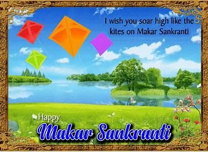 Soar Kites Sankranti Makar 123greetings Greetings Greeting