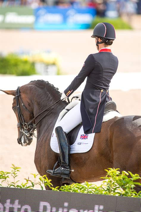 long      dressage rider  reach grand