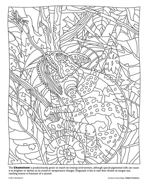 find color from image mindware coloring pages animals search coloring