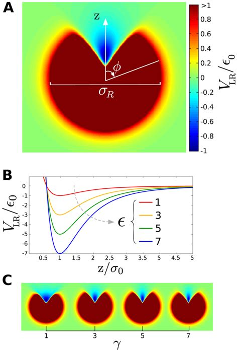 Spatial characteristics of the ligand-receptor interaction ...