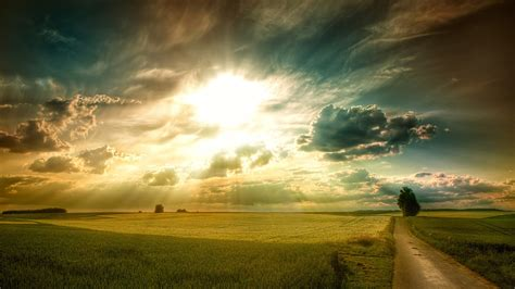sunny fields wallpapers hd wallpapers id