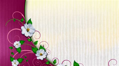 wedding background  hd motion graphics