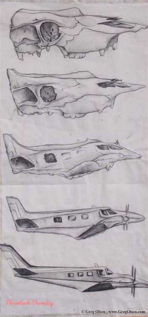 sketchbook  metamorphosis  hybrid ellers artists