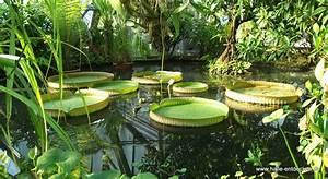 Was Kann Man Im August Noch Pflanzen : botanischer garten in halle saale ~ Lizthompson.info Haus und Dekorationen