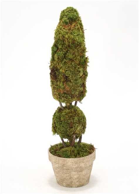 Cone and Ball Moss Topiary in Pot   Free Shipping in USA