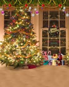 Trees Christmas Studio Backdrops