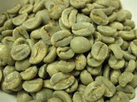 コーヒー 生 豆 保存