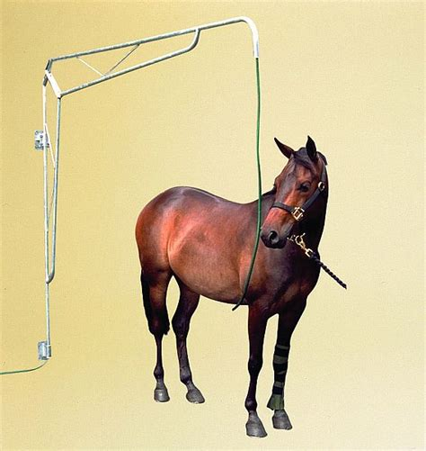 equine shower spraying boom shower requisites