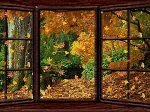 Kostenlose Bilder Herbst : herbst kostenlose g stebuchbilder ~ Yasmunasinghe.com Haus und Dekorationen