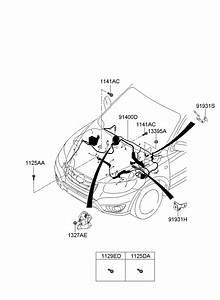 Hyundai Santa Fe Wiring Assembly - Control
